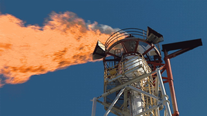 Why it is important to regularly maintain and service a gas flare monitor?
